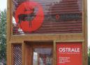 Niemiecka prasa pisze o Ostrale 2017